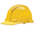 Hard hat for professional tree care